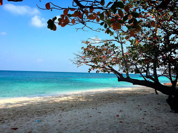 Экскурсии на острова из Паттайи