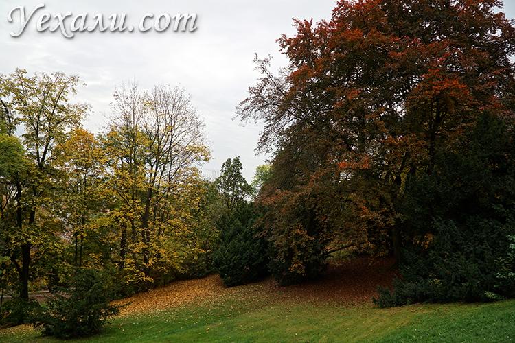 Отзывы о Праге осенью