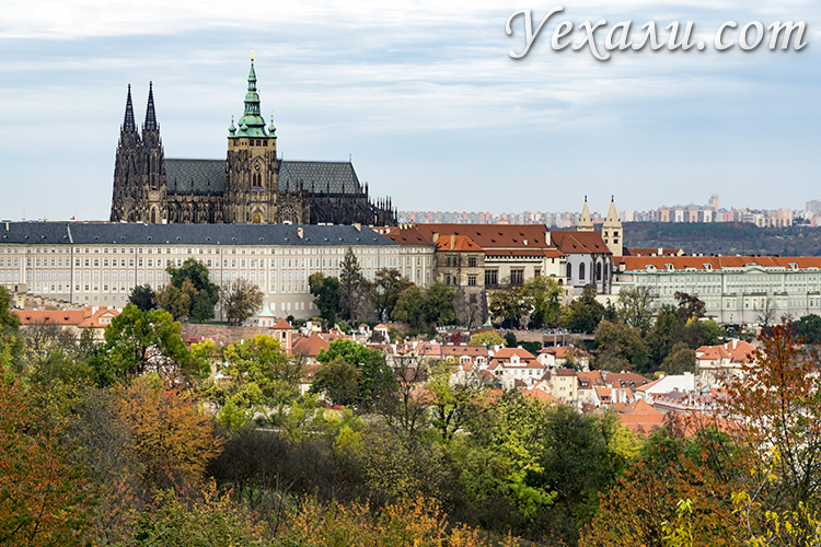 Что посмотреть в Праге за 3 дня самостоятельно. На фото: Пражский Град.