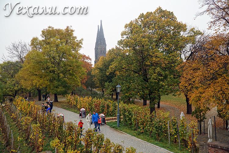 Вышеград Прага фотогалерея