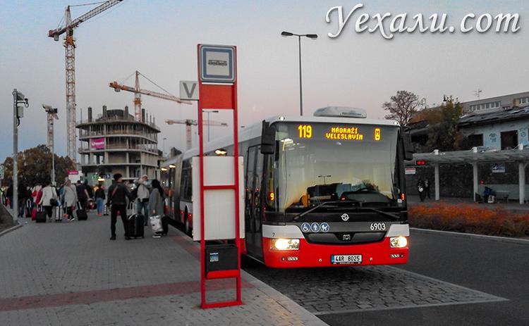 Общественный транспорт Праги, Чехия. Автобусы.