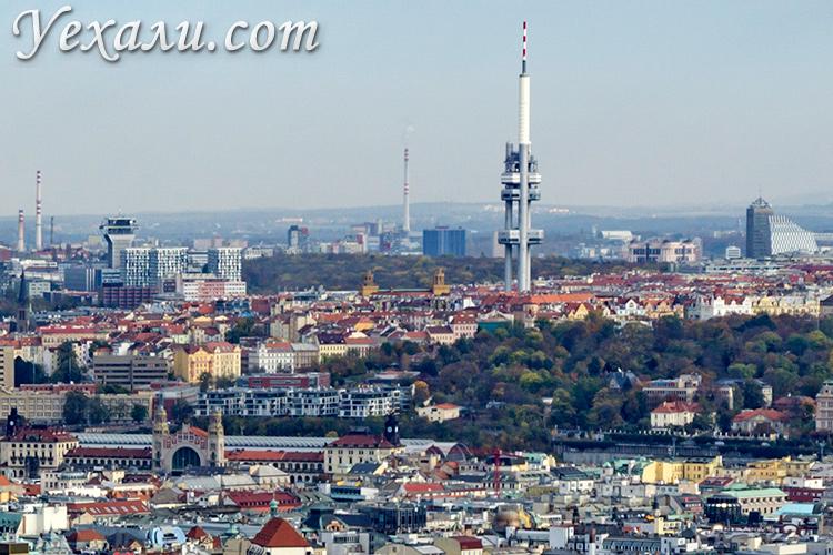 В каком районе Праги лучше жить туристу? на фото: панорама Жижкова.