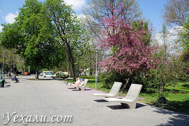 Шезлонги в парке Маргит в Будапеште