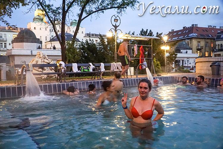 На фото: термы Геллерт, Будапешт (Венгрия)