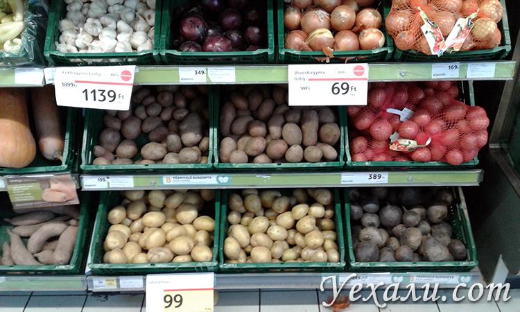 Расценки на еду в магазинах Будапешта
