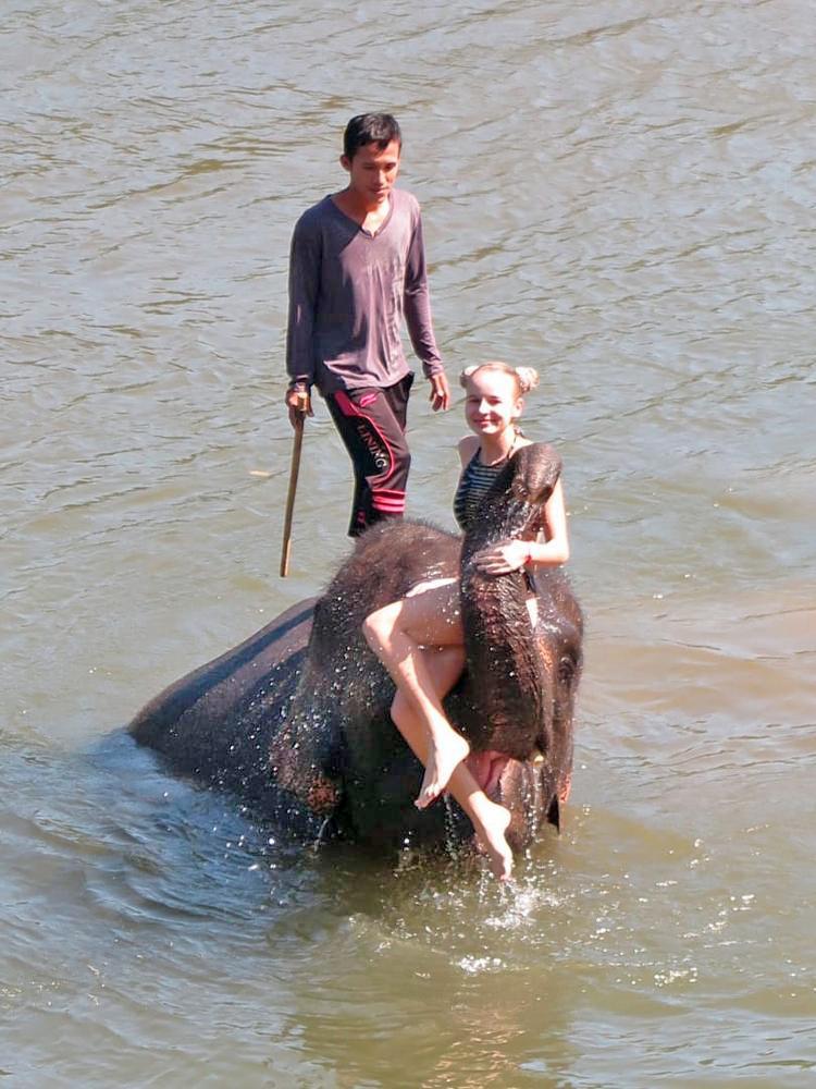 Плавание со слонами отзвы туристов