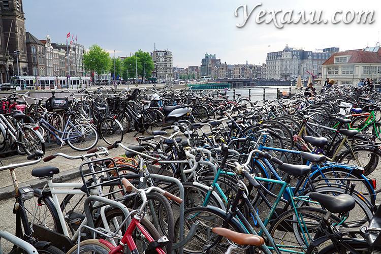 Отрицательные отзывы о поездке в Амстердам в мае