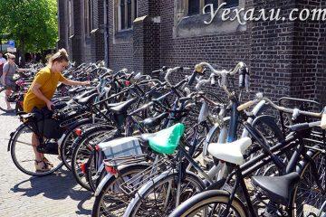Самые интересные факты о Голландии