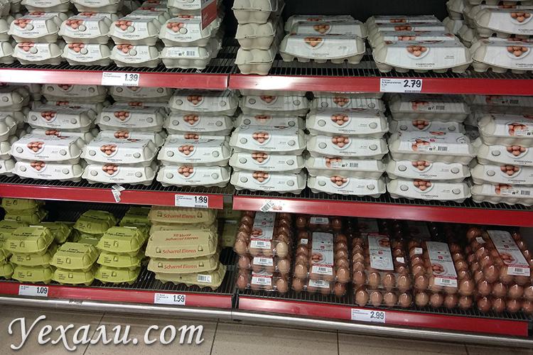 Цены на обычную еду в магазинах Голландии