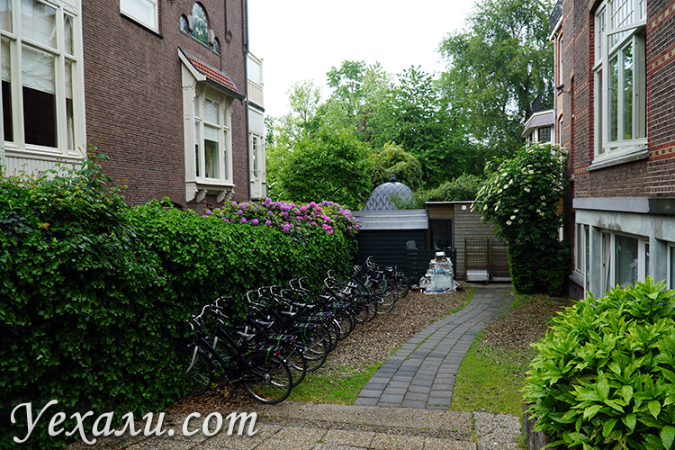 Критические отзывы об Амстердаме