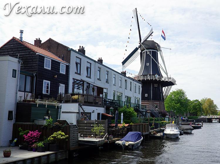 Мельницы в Нидерландах фото