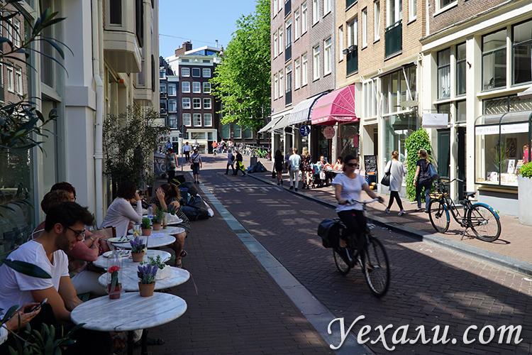 Отзыв о поездке в Амстердам и фотографии