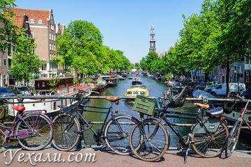 Лучшие экскурсии в Амстердаме на русском языке.
