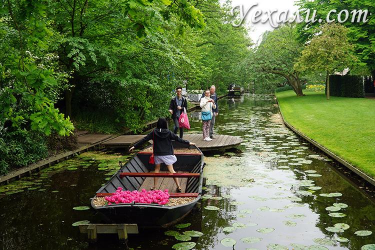 Парк цветов Кекенхоф рядом с Амстердамом.