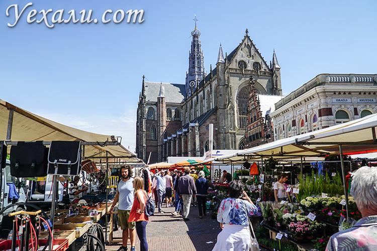 На фото: рыночная площадь Grote Markt, Харлем, Голландия.