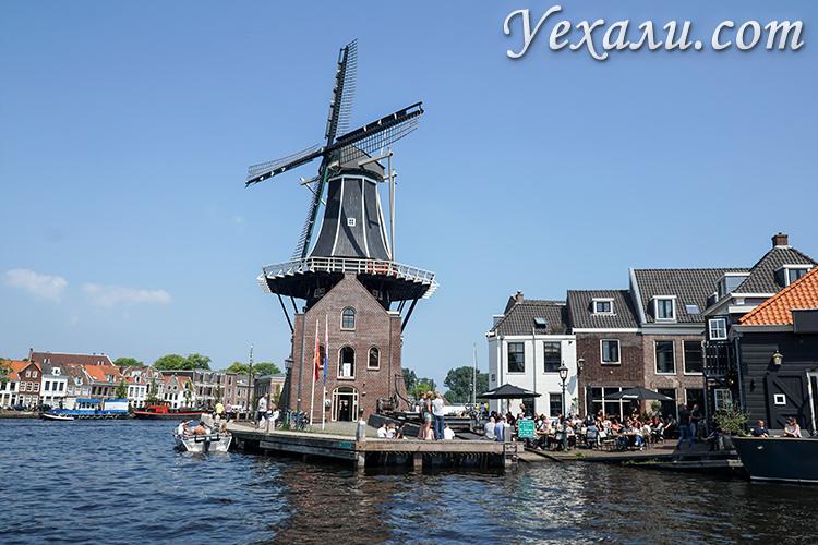 Куда съездить из Амстердама на 1 день: Харлем.