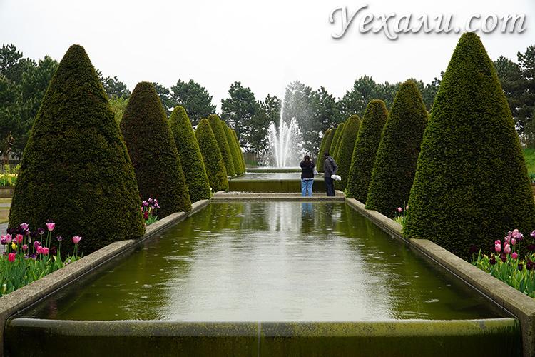 Парк тюльпанов Кекенхоф в Голландии