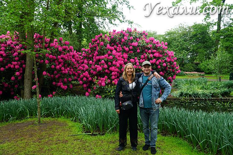 Мы с друзьями в парке цветов Кекенхоф