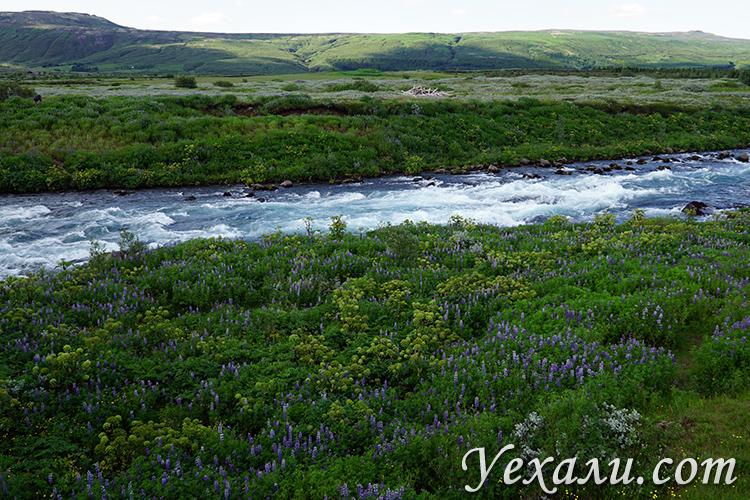 Фото Исландии летом
