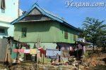 Лабуан Баджо: как в Африке, только в Индонезии. Фото города, впечатления наши и милого человека с Букинга