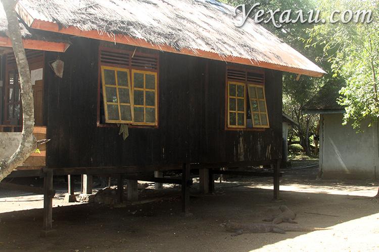 Кухня в национальном парке Комодо