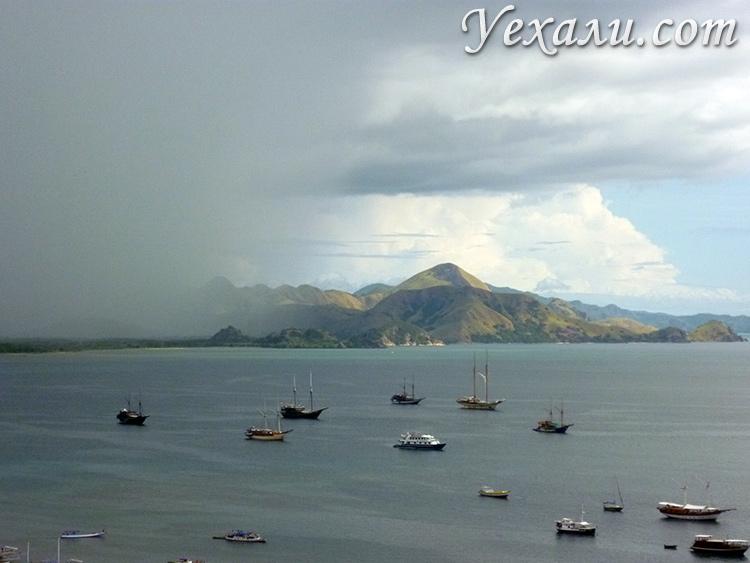 Дождь в Индонезии