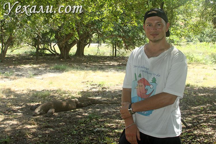 Экскурсия в национальный парк Комодо реальный отзывы