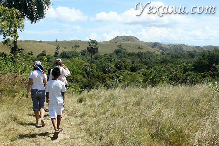Индонезия самостоятельная экскурсия в национальный парк Комодо