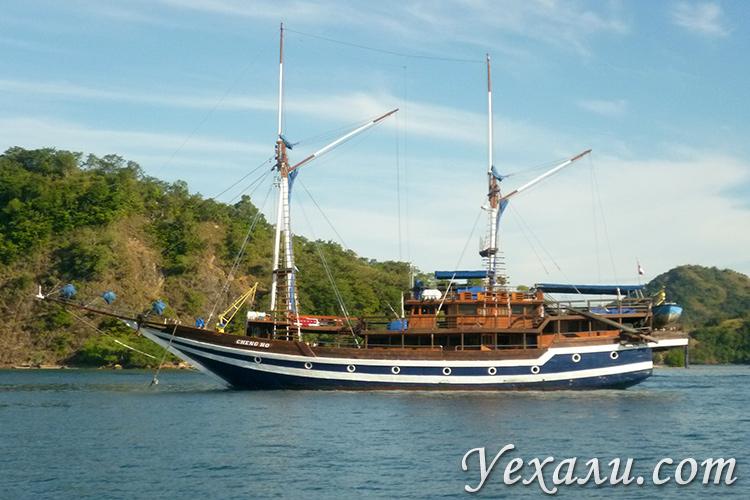 Экскурсия в национальный парк Комодо в Индонезии