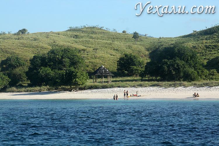Пляжный отдых на экскурсии в комодский национальный парк
