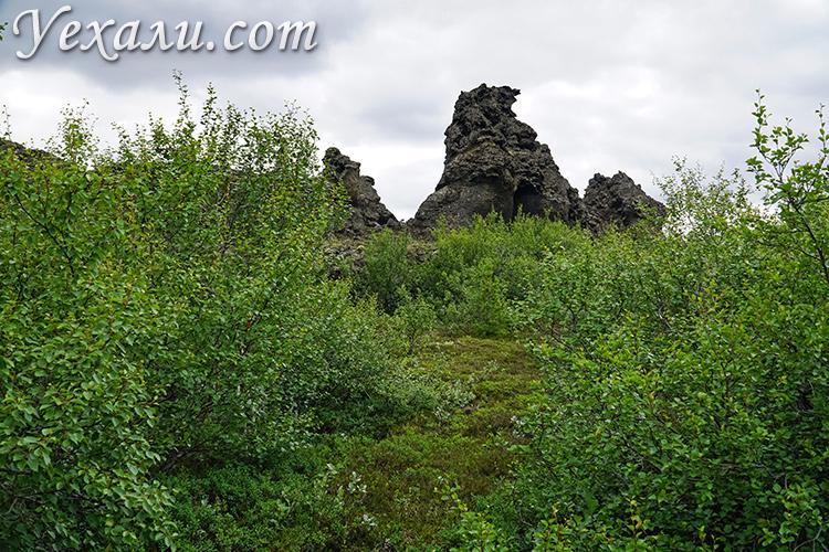 На фото: лавовые поля Димму Боргир, Исландия.