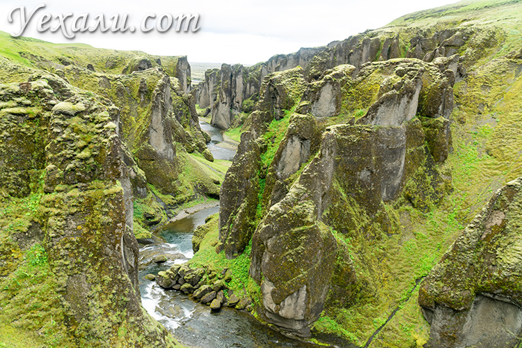 Исландия, каньон Фьядраргльюфур (Fjaðrárgljúfur).