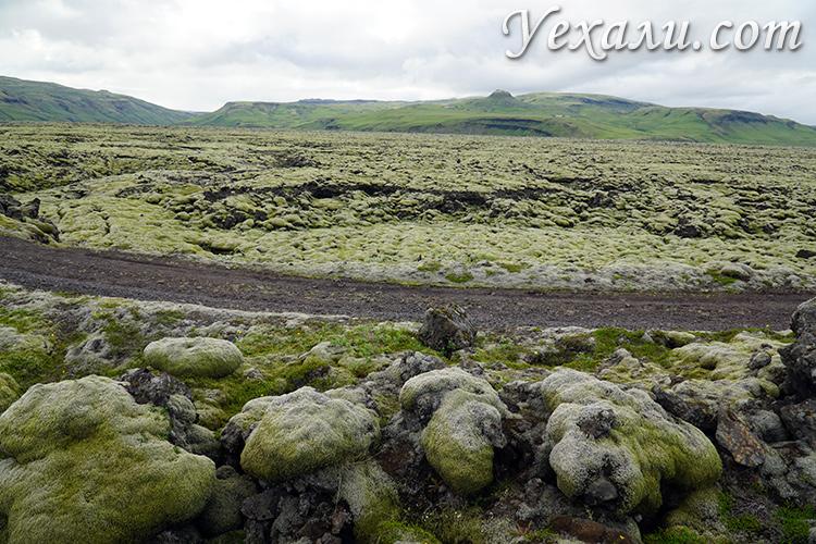 Фото лавовых полей в Исландии