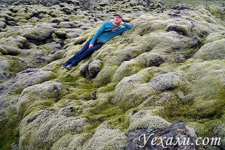 Лавовые поля Лаки в Исландии фото и отзывы