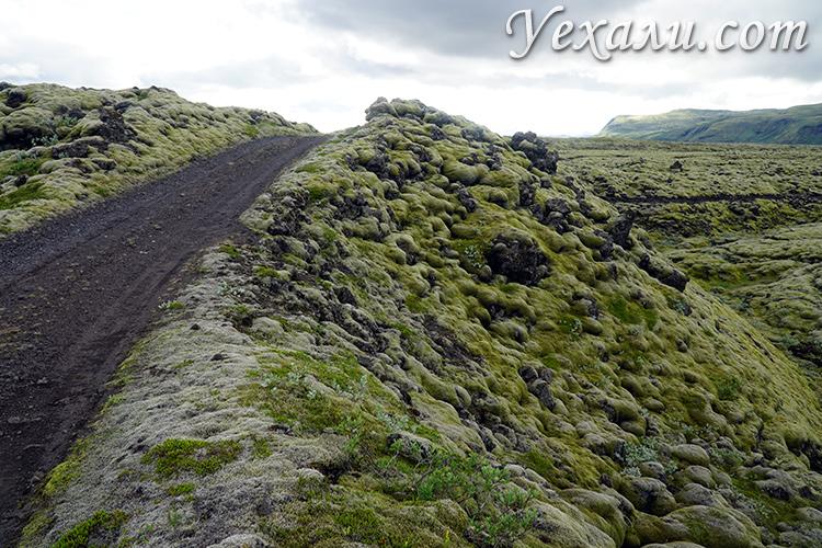 Путешествие по лавовым полям Лаки в Исландии отзывы
