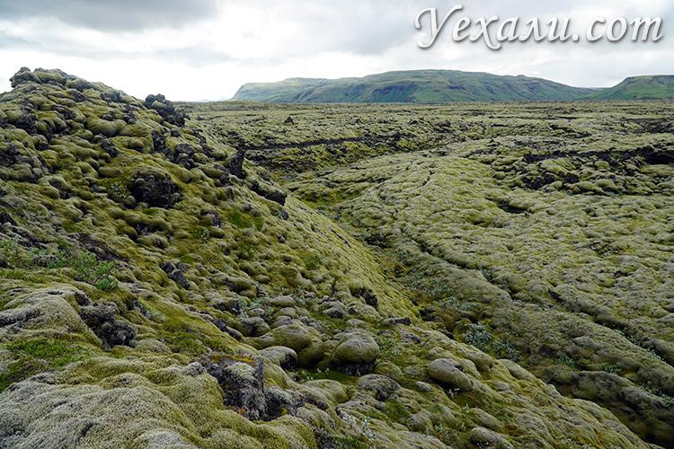 Лавовые поля Лаки в Исландии, почему они такие