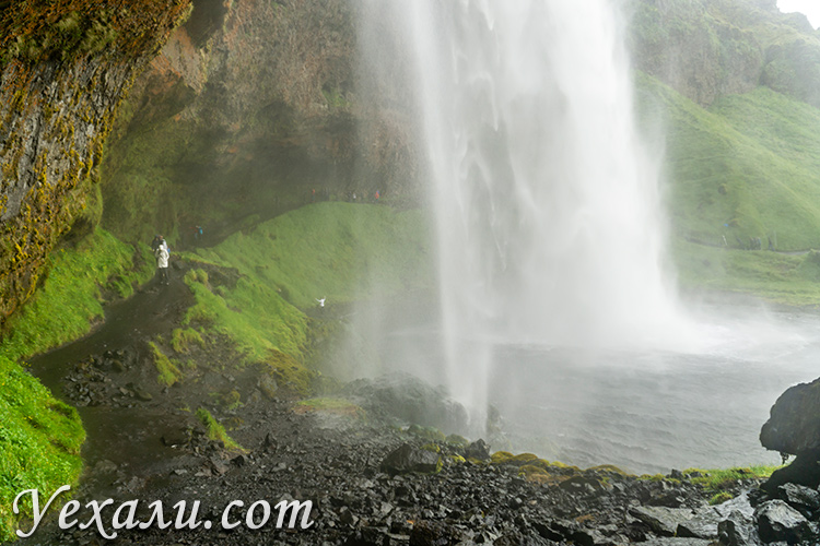 На фото: водопад Сельяландсфосс в Исландии.