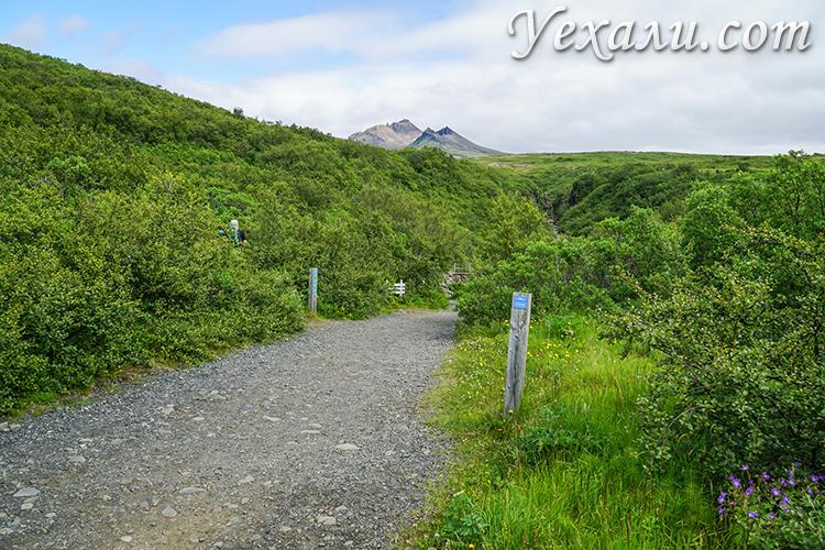 Национальный парк Скафтафетль, Исландия. Трекинг к водопаду Свартифосс.