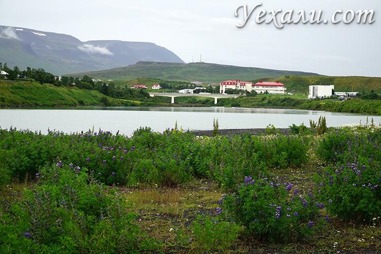 Фото побережья Северного Ледовитого океана на севере Исландии