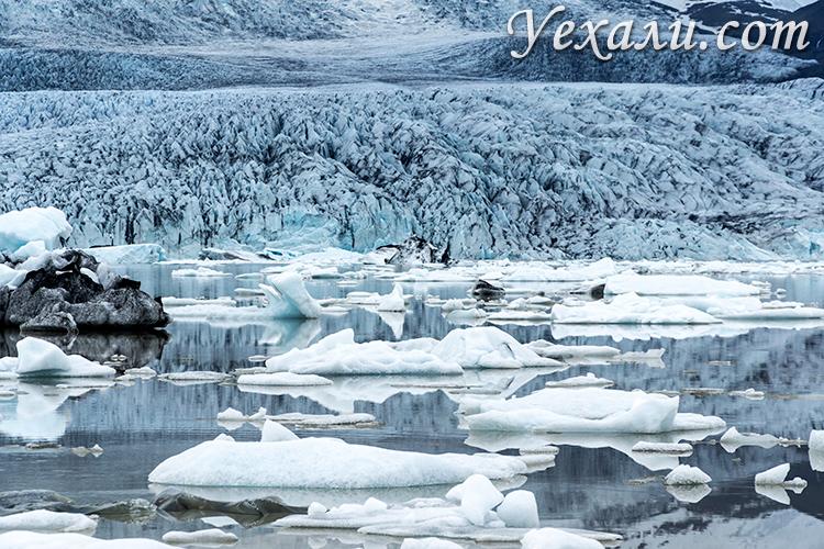 Ледники Исландии. Лагуна Fjallsárlón.