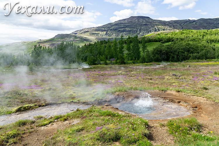 Маршрут Золотое Кольцо Исландии, долина гейзеров Хаукадалур.