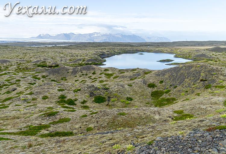 Лавовые поля Исландии.