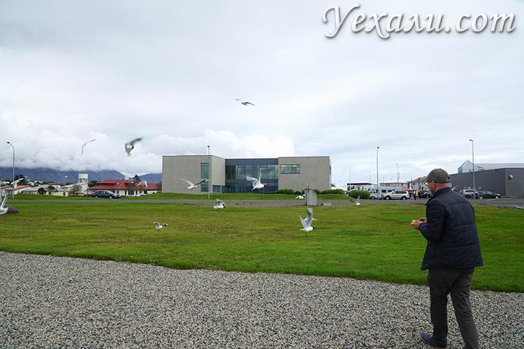 Фото городе Хёбн в Исландии