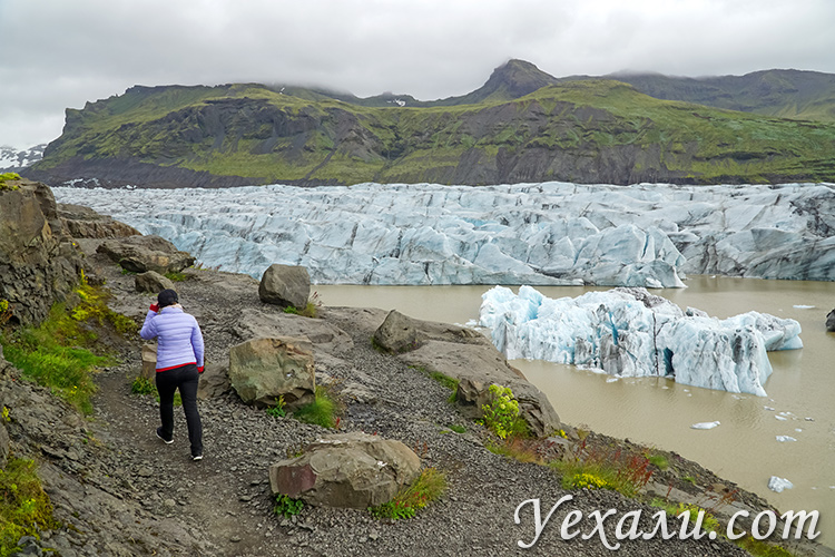 Самые красивые ледники Исландии. На фото: Свинафелл.