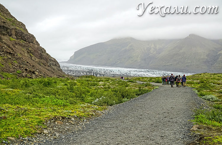 Ледники Исландии. На фото - Скафтафетль.