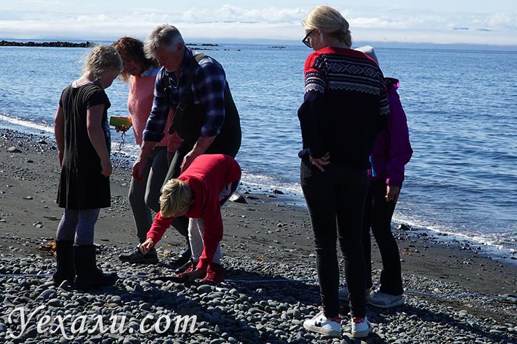 Фото рыбалки на севере Исландии