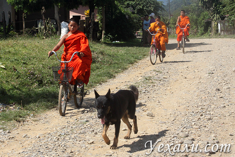 На сколько стоит поехать в Лаос
