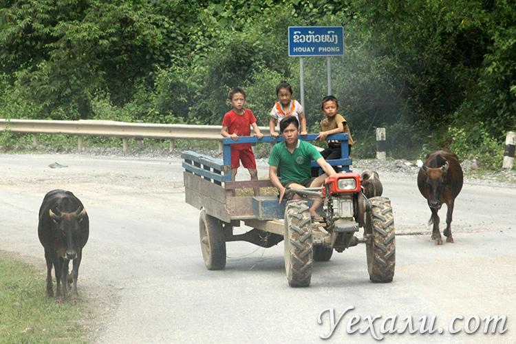 Сколько дней стоит провести в Лаосе