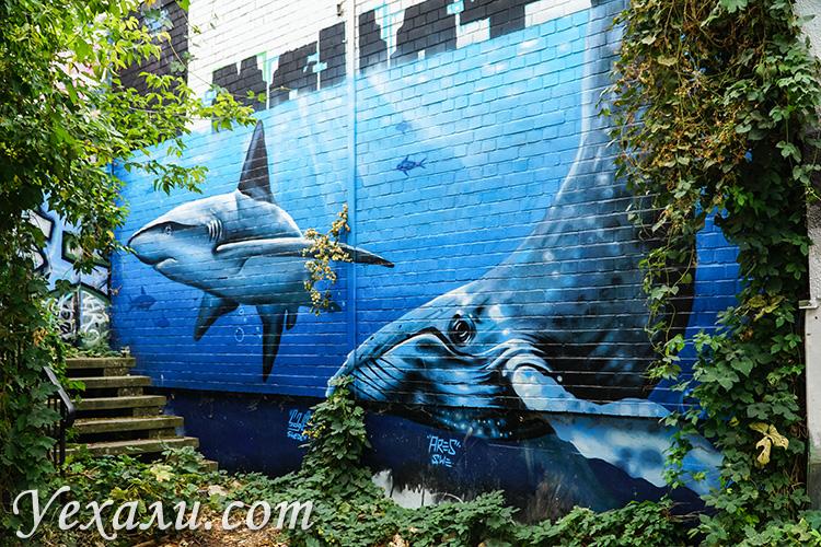 Граффити в Берлине. Проблемы Мирового океана.
