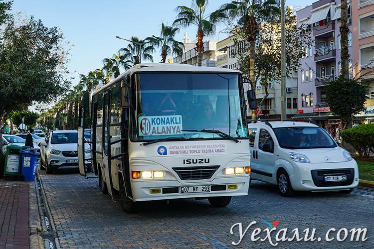 Пригородные автобусы Аланья - Конаклы, Турция.